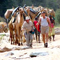 Walking Safaris In Kenya Tour