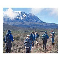 8 Days Mount Kilimanjaro Climb (Umbwe Route) Tour