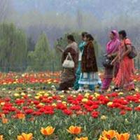 Women's Special Kashmir Vaishnodevi (8 nights & 9 days) Tour