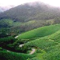 Kerala Classical Tour