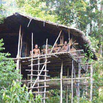 Korowai Tribe Adventures Package
