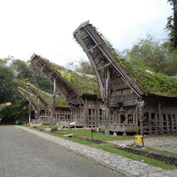 Toraja Cultural Tour 4 Days Package