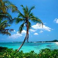 4Days Bahamas Tour