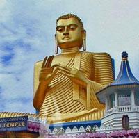 Amazing Srilanka Tour