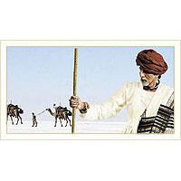 Gujarat Kutch Rann Urtsav Tour