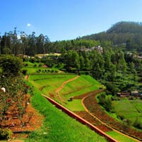 Ooty Kodaikanal Package