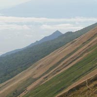 Trekking and Hiking Mount Cameroon Tour