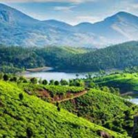 Darjeeling & Kalimpong with Gangtok Tour