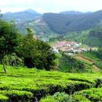 Shimla Manali Honeymoon Tour