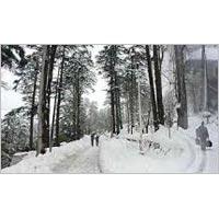 Jammu - Patnitop - Katra Tour - 2 Nights /3 Days