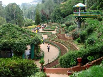 Bangalore-mysore-ooty Package