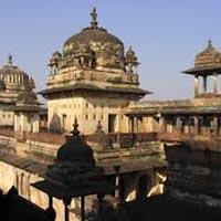 Amazing Tour of India