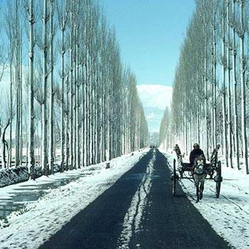 Kashmir Package Package