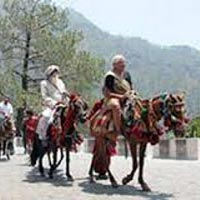 Paradise On Earth With Mata Vaishnodevi Tour