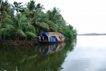 Munnar, Thekkady, Alleppy, Kottayam, Kovalam, Kochi Tour