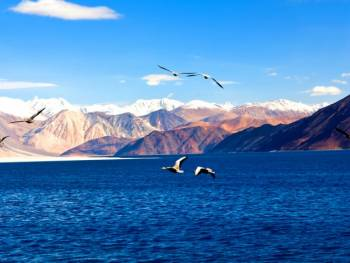 Leh– Ladakh Tour - Leh Ladakh,Pangong Lake,