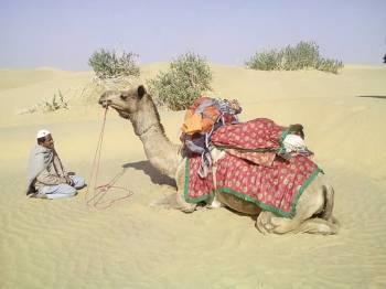 Marvels of Rajasthan Package