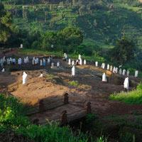 Classic Historic Ethiopia Tour