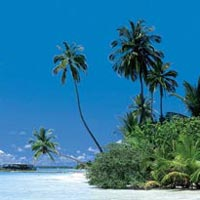 Maldives Special offer Tour