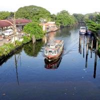 Cochin - Munnar - Alleppey Tour
