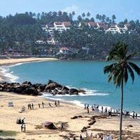 Cochin - Munnar - Alleppey - Kovalam - Trivandrum drop Tour