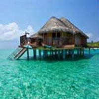 Sri Lanka & Maldives Tour