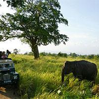 Explore Srilanka Tour