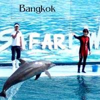 Thailand Thunders Tour