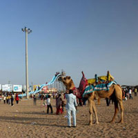 Mandvi Day Tour Package