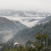 Mukteshwar And Naukuchiatal Tour Packages