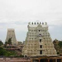 South East India - Tamil Nadu Tour