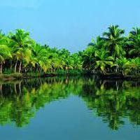 Kerala Experience Munnar - Thekkady - Alleppey Tour