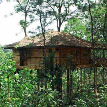 Heritage Kerala Tour with Tree House