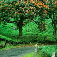 Exploring Trip To Kerala Tour