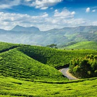 Comfortable & Cosy trip to Kerala Tour