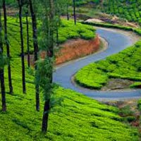 Short Holiday Trip To Kerala Tour