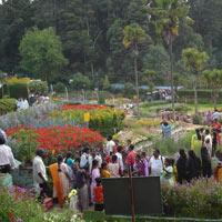 04 Days Family Tour at Tamil Nadu
