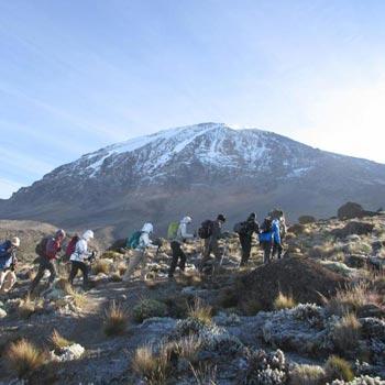 Kilimanjaro Lemosho  and the Northern Circuit Trek Tour