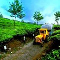 Kerala Tour With Tea Garden Tour