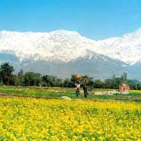 Religious Tours Of Himachal Pradesh
