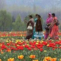 Women's Special Kashmir Vaishno Devi Tour