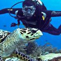 Complete Andaman Package