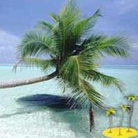 Mangalore - Goa Beach Tour