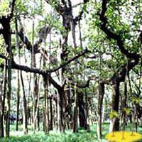 Bangalore - Nagarhole Tour