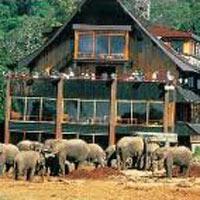 Aberdare, Lake Nakuru and Masai Mara Game Reserve Tour