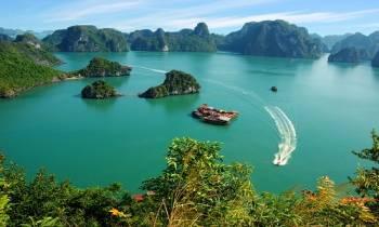 Hanoi - Halong Bay -  Tamcoc Tour