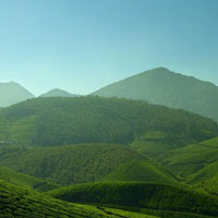 3 Nights/ 4 Days Kerala Spice Trail Package