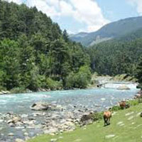 Kashmir Nature Tour