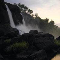 Pollachi - Valpari - Athripally Falls Tour