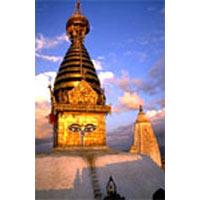 Nepal Chitwan & Pokhara Tour
